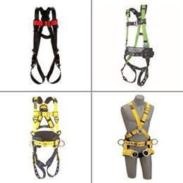 Picture for category Harnesses and Accessories