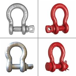 Picture for category Shackles